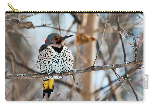 Yellow-shafted Northern Flicker Staying Warm Carry-all Pouch
