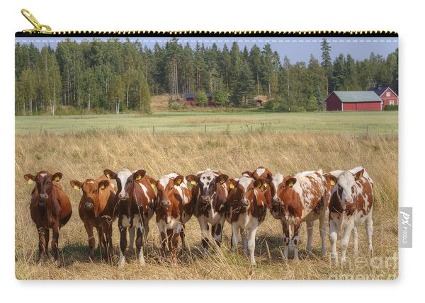 Young Calves On Pasture Carry-all Pouch