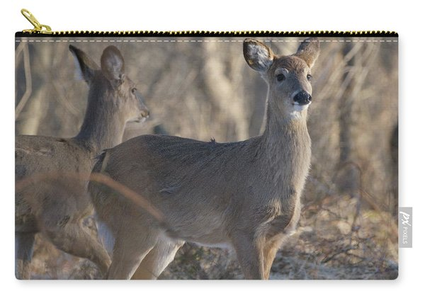 Young Deer In A Pack Carry-all Pouch