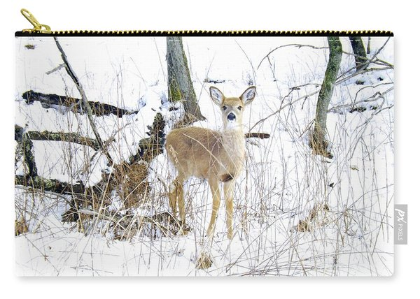 Young Doe And Spring Snow Carry-all Pouch