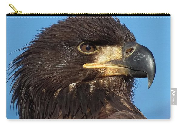 Young Eagle Head Carry-all Pouch