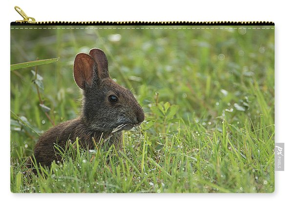 Young Rabbit Dining Carry-all Pouch