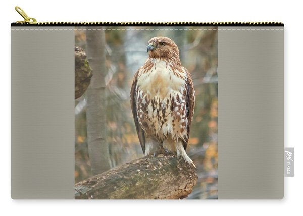Young Red Tailed Hawk  Carry-all Pouch