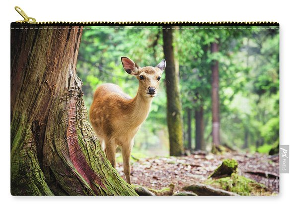 Young Sika Deer In Nara Park Carry-all Pouch