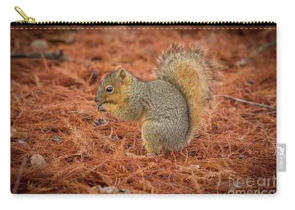 Yum Yum Nuts Wildlife Photography By Kaylyn Franks     Carry-all Pouch