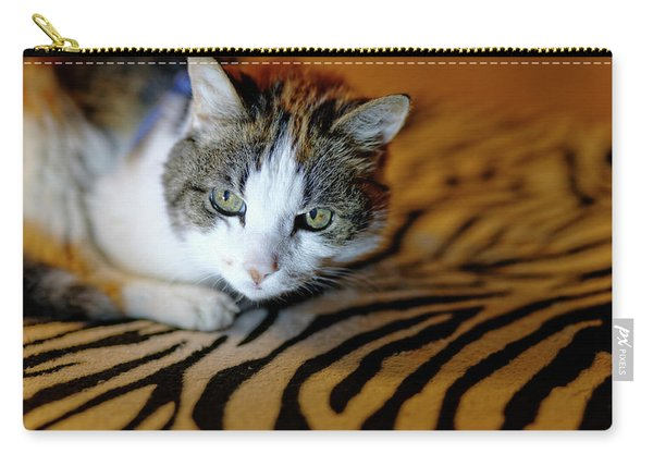 Zebra Cat Carry-all Pouch