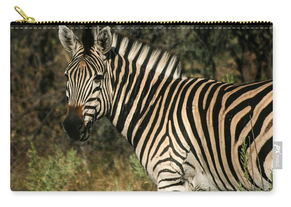 Zebra Watching Carry-all Pouch