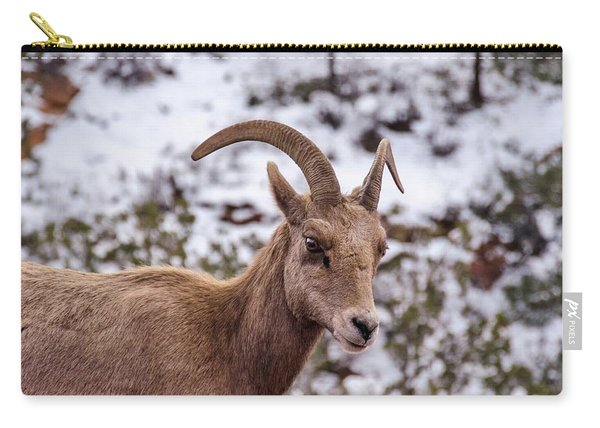Zion Bighorn Sheep Close-up Carry-all Pouch