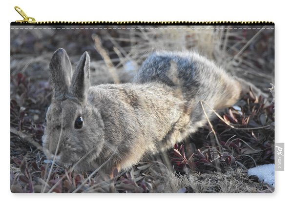 Carry-all Pouch featuring the photograph 02-27-18 Rabbit by Margarethe Binkley