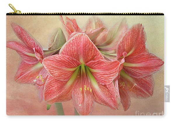 Amaryllis  'terra Cotta Star' Carry-all Pouch