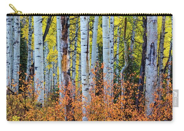 Carry-all Pouch featuring the photograph Autumn In Color by John De Bord