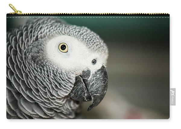 Close Up Of An African Grey Parrot Carry-all Pouch