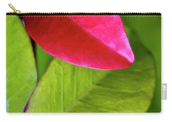Colours. Red Carry-all Pouch