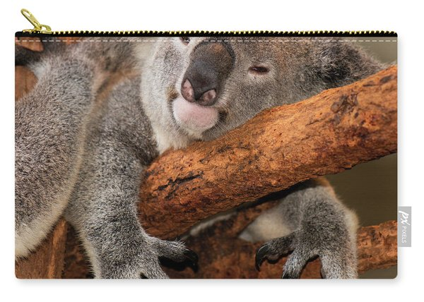 Carry-all Pouch featuring the photograph Cute Australian Koala Resting During The Day. by Rob D Imagery