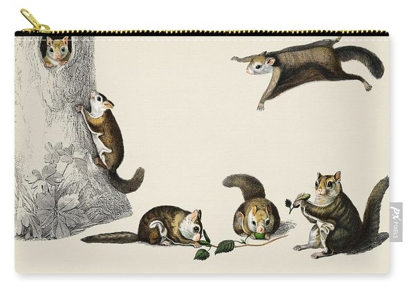 Glaucomys Sabrinus  Polatouche D Amerique  Illustrated By Charles Dessalines D Orbigny  1806 1876  Carry-all Pouch