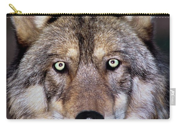 Gray Wolf Portrait Endangered Species Wildlife Rescue Carry-all Pouch