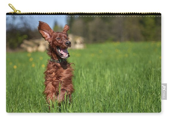 Happy Setter Carry-all Pouch