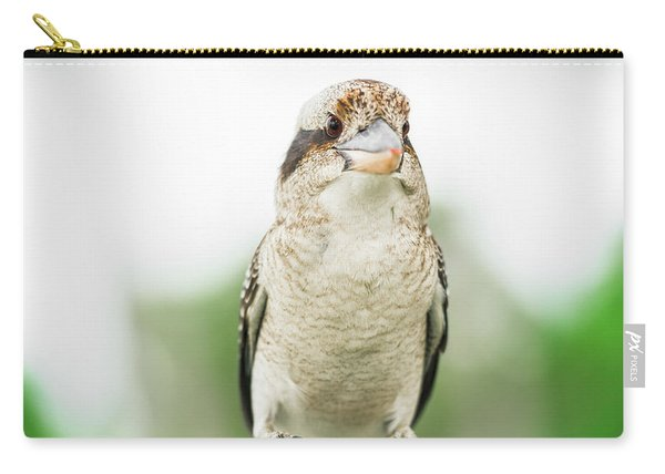 Carry-all Pouch featuring the photograph Kookaburra Gracefully Resting During The Day. by Rob D Imagery