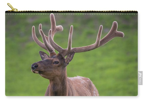 Carry-all Pouch featuring the photograph ME1 by Joshua Able's Wildlife
