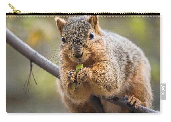 Carry-all Pouch featuring the digital art Snacking Squirrel by Don Northup