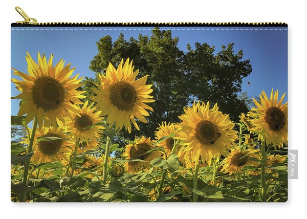 Sunlit Sunflowers Carry-all Pouch