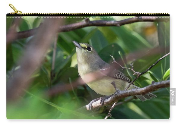 Thick-billed Vireo Carry-all Pouch