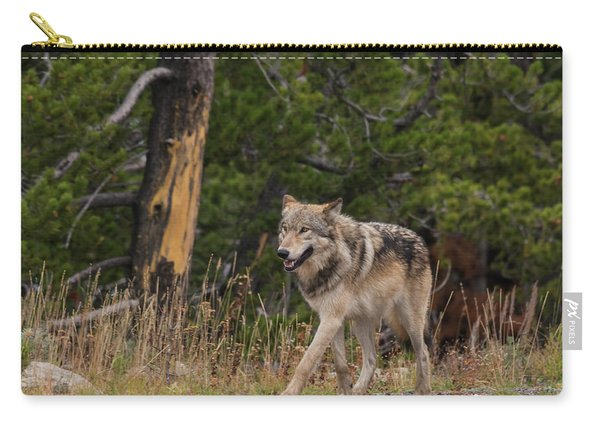 Carry-all Pouch featuring the photograph W1 by Joshua Able's Wildlife