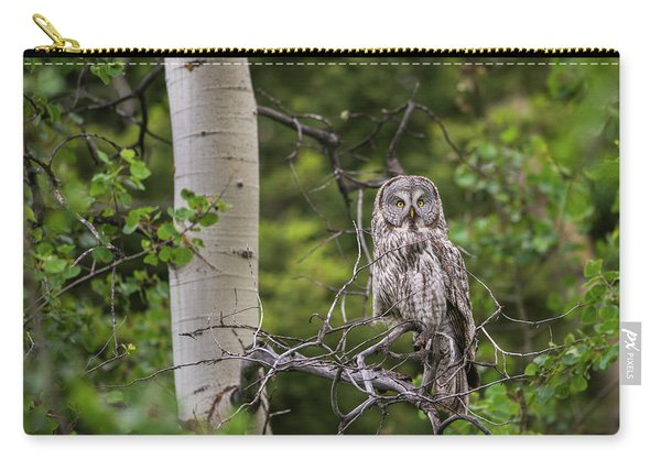 Carry-all Pouch featuring the photograph B14 by Joshua Able's Wildlife