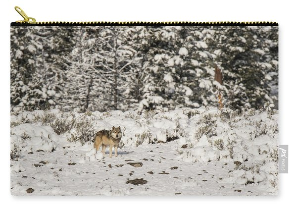 Carry-all Pouch featuring the photograph W20 by Joshua Able's Wildlife
