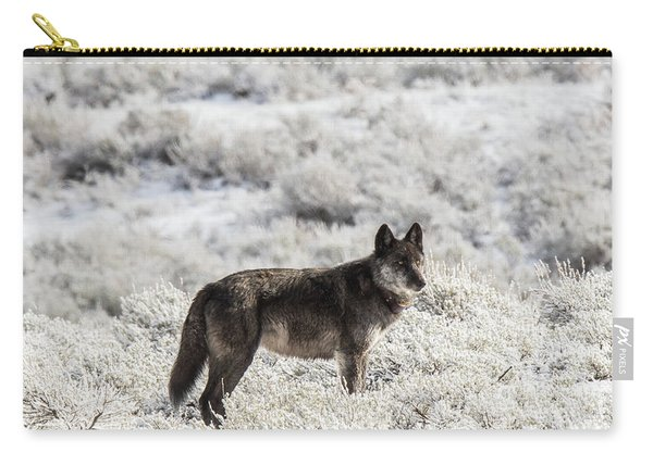 Carry-all Pouch featuring the photograph W23 by Joshua Able's Wildlife