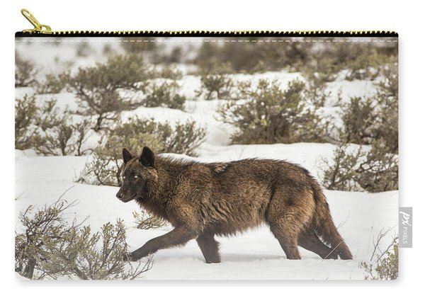 Carry-all Pouch featuring the photograph W4 by Joshua Able's Wildlife
