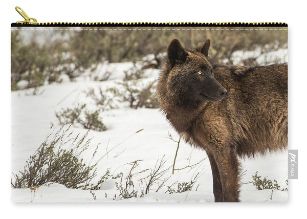 Carry-all Pouch featuring the photograph W6 by Joshua Able's Wildlife