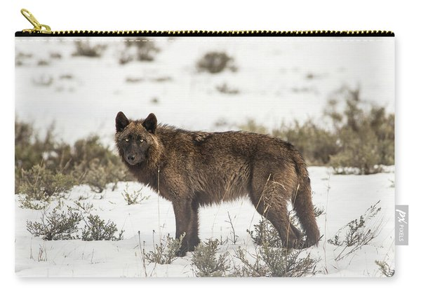 Carry-all Pouch featuring the photograph W8 by Joshua Able's Wildlife