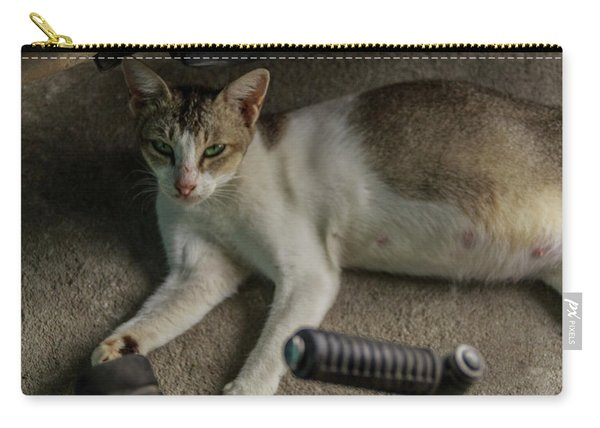 A Beautiful Female Cat  Carry-all Pouch