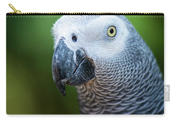 Carry-all Pouch featuring the photograph African Grey Parrot by Rob D Imagery