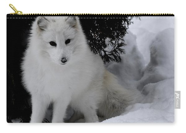 Artic Fox Carry-all Pouch