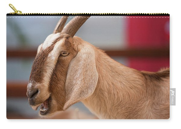 Carry-all Pouch featuring the photograph Goat by Rob D Imagery