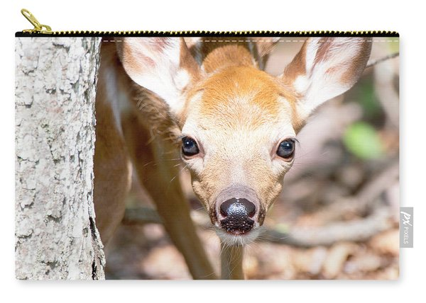 White-tailed Deer Fawn, Animal Portrait Carry-all Pouch