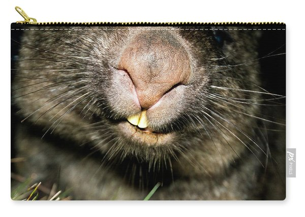 Carry-all Pouch featuring the photograph Wombat At Night by Rob D Imagery