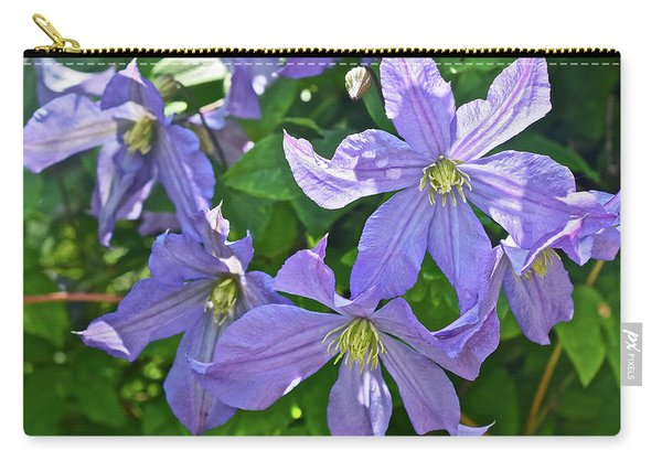 2019 June At The Gardens Prince Charles Clematis Carry-all Pouch