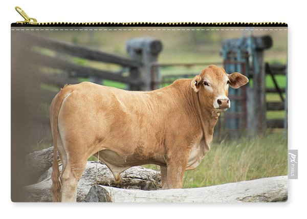 Carry-all Pouch featuring the photograph Bull In The Country Side. by Rob D Imagery