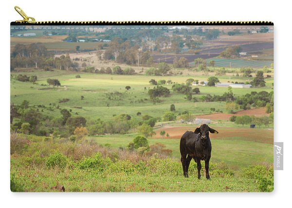 Carry-all Pouch featuring the photograph Cow Outside In The Paddock by Rob D Imagery