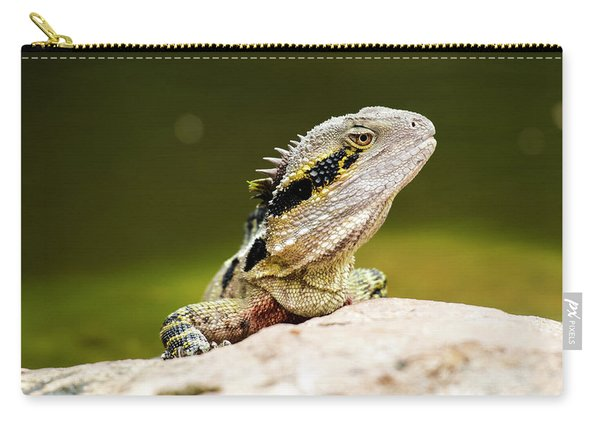 Carry-all Pouch featuring the photograph Eastern Water Dragon Lizard by Rob D Imagery