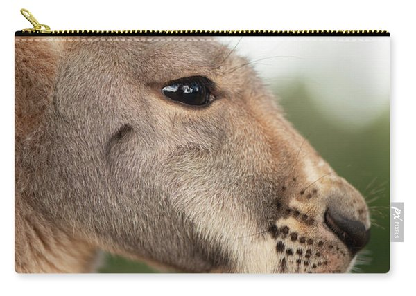 Carry-all Pouch featuring the photograph Kangaroo Outside During The Day Time. by Rob D Imagery