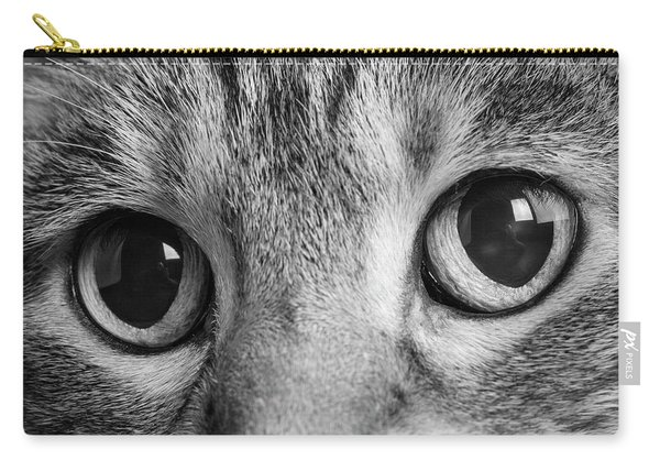 Portrait Of A Tabby Cat Carry-all Pouch