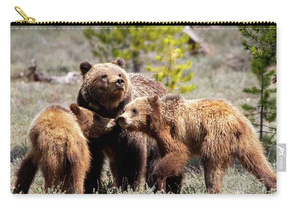 399 And Cubs Carry-all Pouch