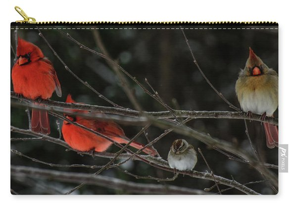3cardinals And A Sparrow Carry-all Pouch