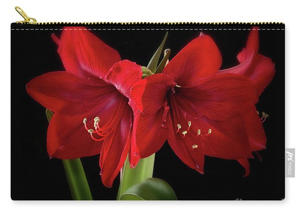 Amaryllis Merlot' Carry-all Pouch