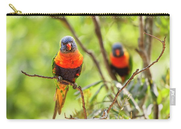 Carry-all Pouch featuring the photograph Rainbow Lorikeets by Rob D Imagery
