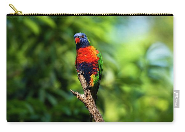 Carry-all Pouch featuring the photograph Rainbow Lorikeet by Rob D Imagery
